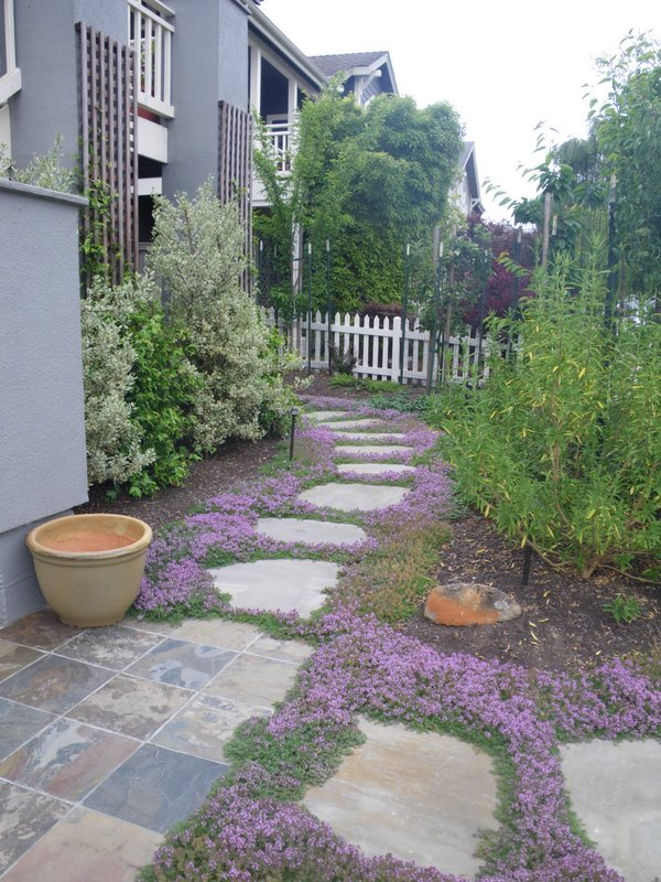 Top Front Yards with Stepping Stones 600 x 800 · 148 kB · jpeg