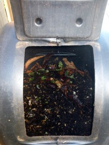 Inside a rolling composter with worms