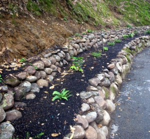 Low retaining walls can help prevent erosion