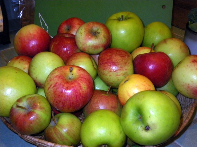 Make applesauce with your extra apples from the garden