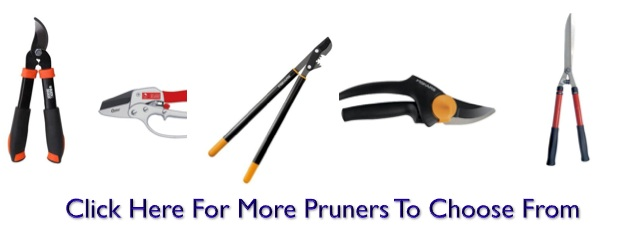 Pruners for edible landscaping