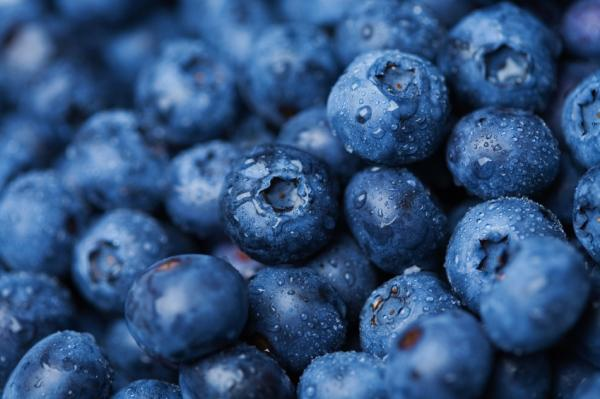 close up of blueberries - Increase your memory by food !