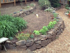 Raised beds with stone from the site