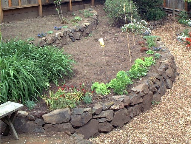 raised beds | Edible Landscaping Made Easy With Avis Licht on