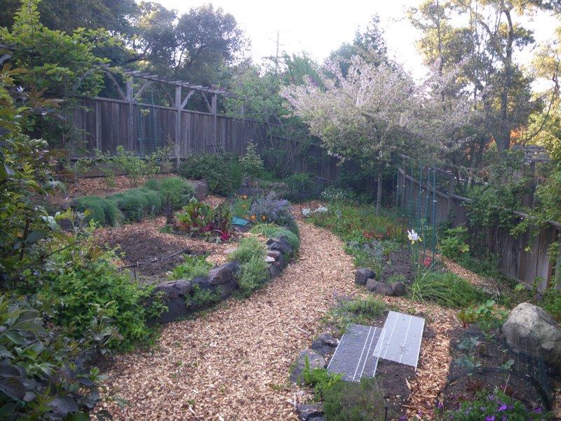 the ornamental vegetable garden