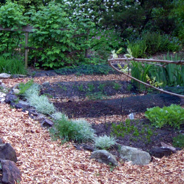wood | Edible Landscaping Made Easy With Avis Licht Raised Stone Garden Design Ideas on stone walkways ideas, stone fireplaces ideas, stone fencing ideas, stone fire pits ideas, stone paths ideas, stone shed ideas, stone mulch ideas,