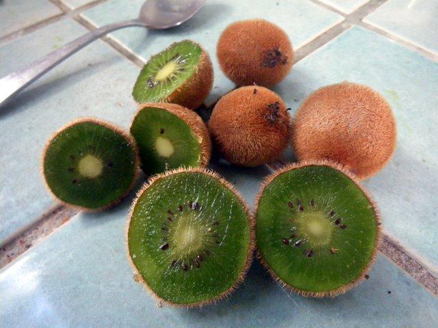 Ripe kiwifruit