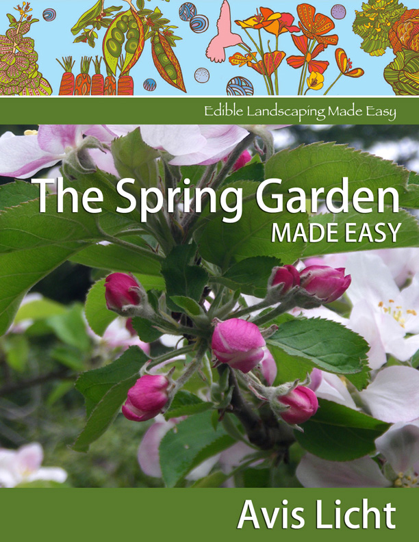 GET STARTED NOW!- The Spring Garden Made Easy - e-book