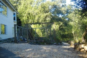 The old garden fence and site.