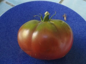 A ripe Brandywine tomato