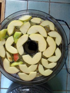 Apples in dehydrating tray
