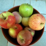 How to Preserve Apples from your Edible Landscape
