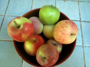 4 varieties from one tree