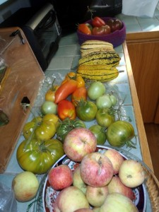 Tomatoes, apples, squash
