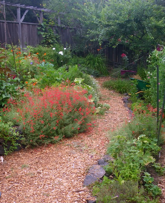 An inviting path into the edible garden.
