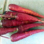 Purple Cosmic Carrots