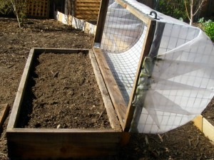 Combine your raised bed with a top and voila! a cold frame and bird protector